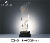 Z06008